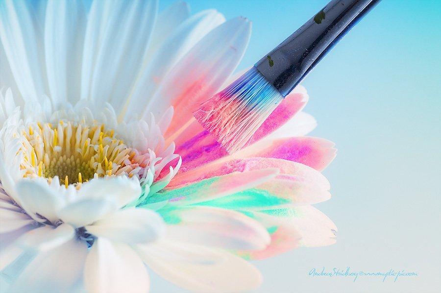 Floral-100226-113.jpg