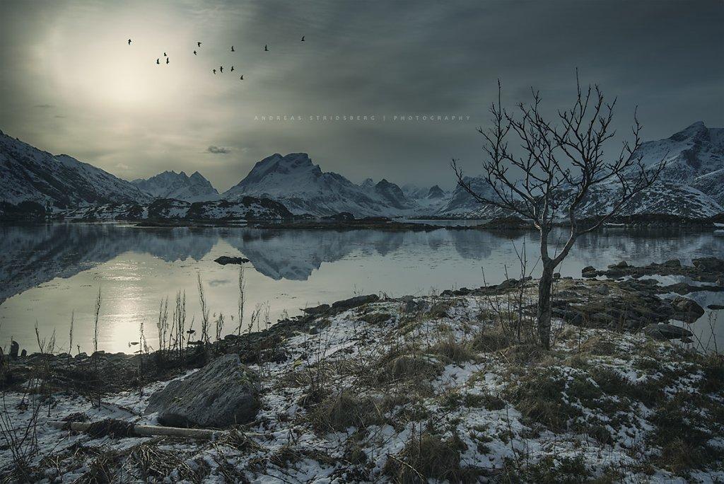 Lofoten-160225-440.jpg