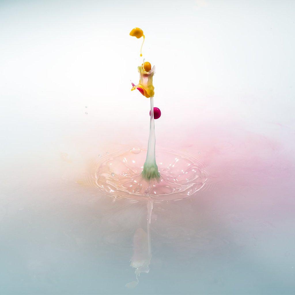 Splash-191106-007.jpg